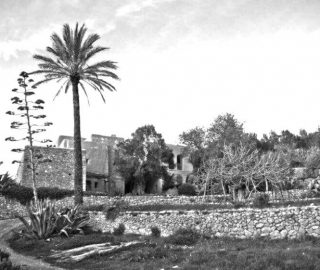 jardin_ibicenco_black white